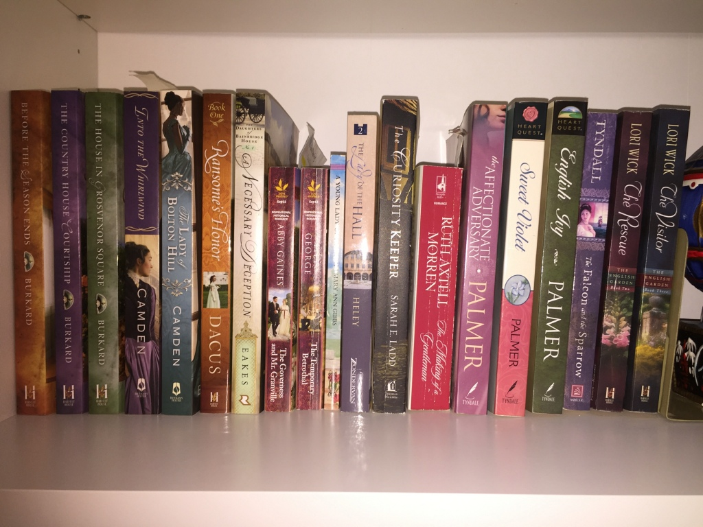 Photo of book shelf showing spines of historical fiction novels in order by author last name.